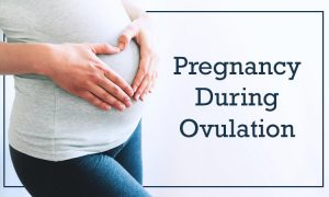 pregnancy during ovulation