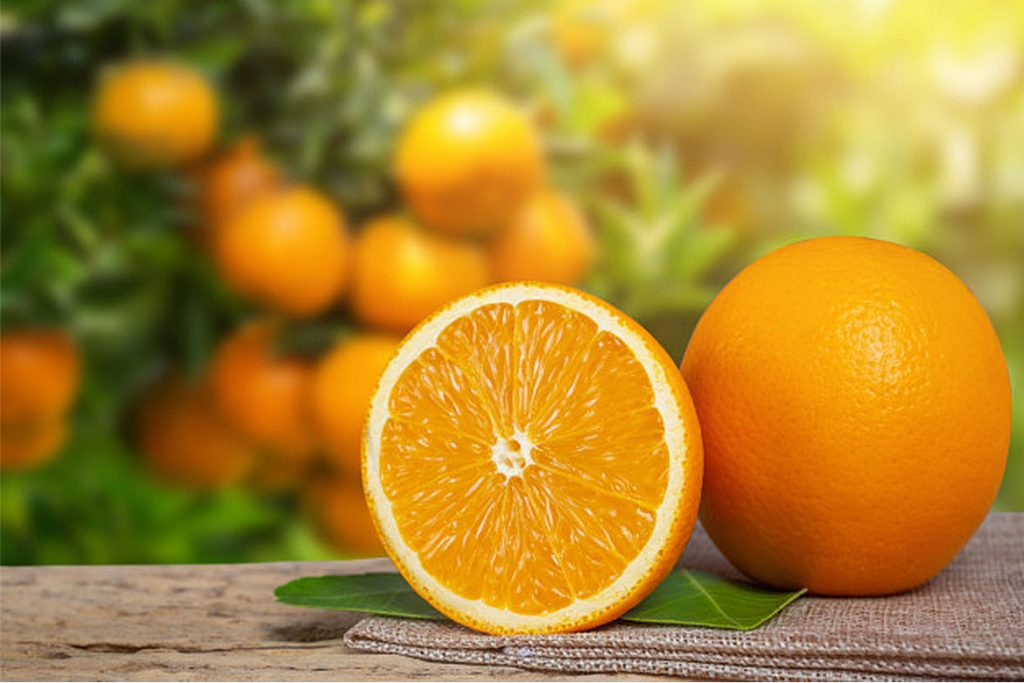 orange - HealthNews24Seven