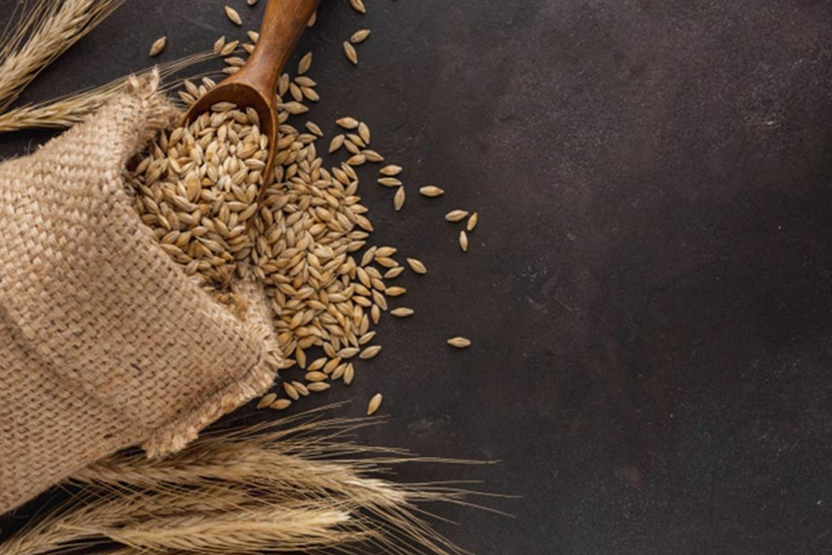wheat - HealthNews24Seven