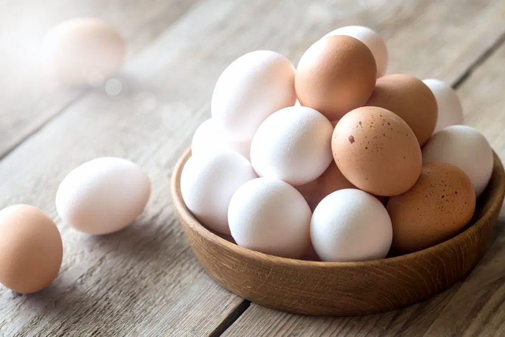 eggs - HealthNews24Seven